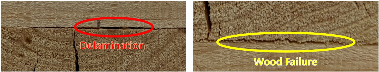 Comparison of delamination and wood failure