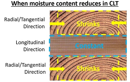 Lamella shrinkage causing delamination in cross-laminated timber (CLT)