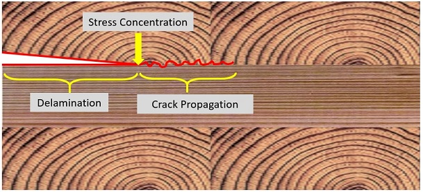 Progression of delamination due to stress concentration at the tip of crack.